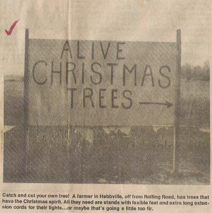Alive Christmas 